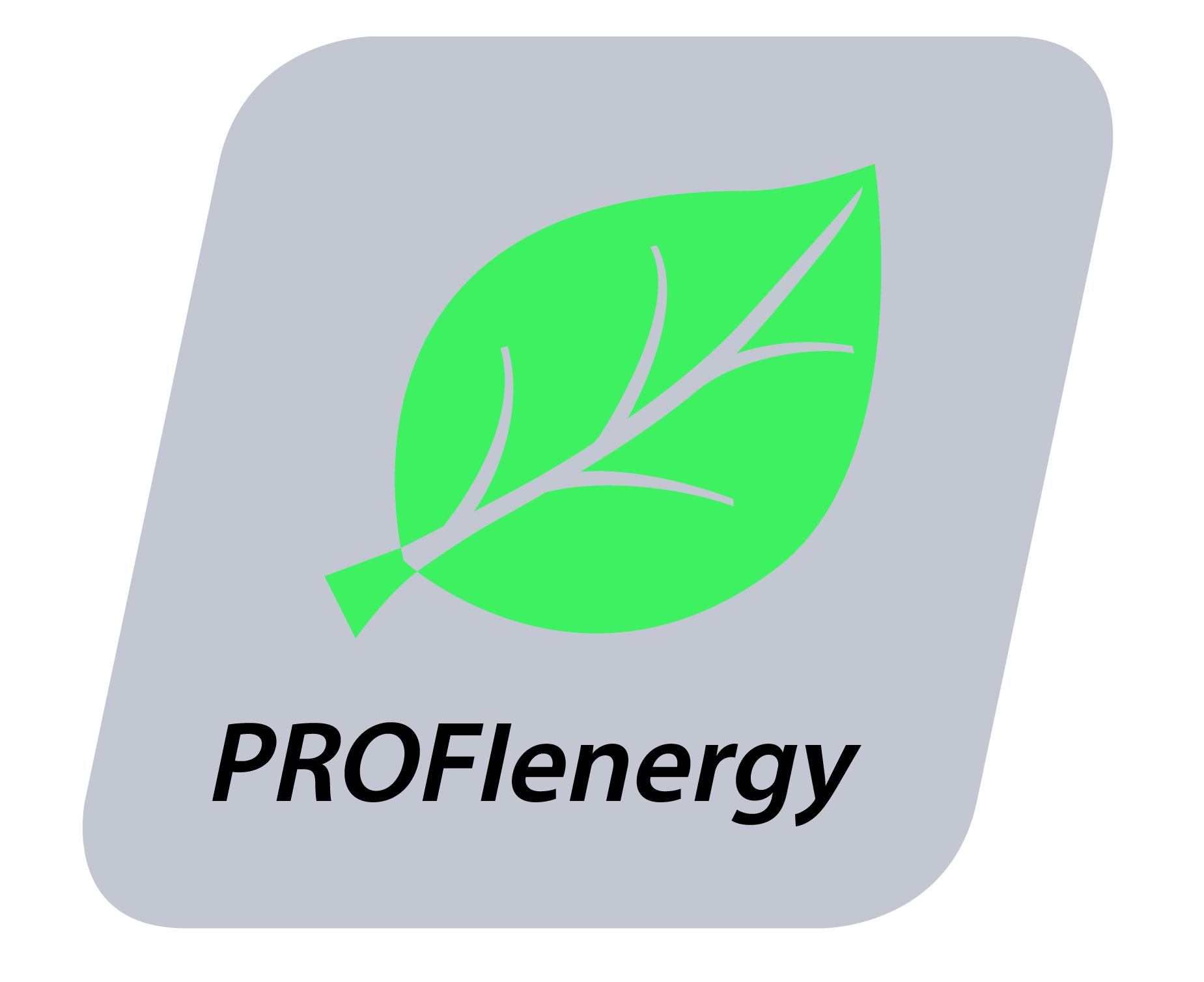 Lees meer over het artikel Bekijk online de werking van PROFIenergy